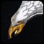 Glittery Eagle Named Lord Bratnose